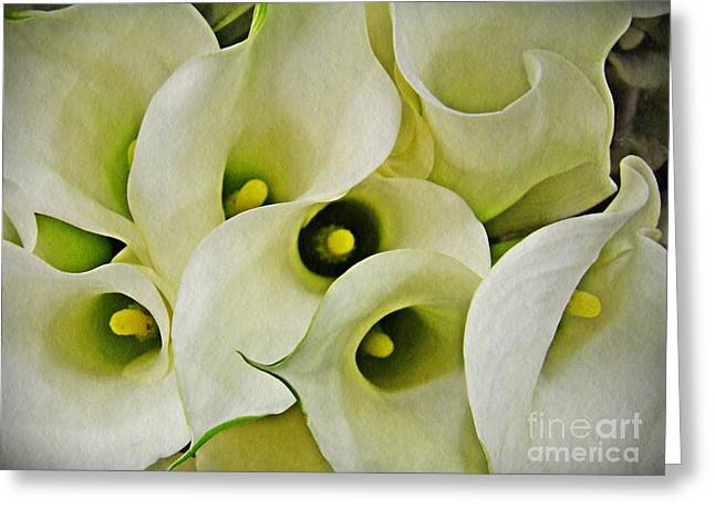 Calla Lilies Greeting Card by Sarah Loft