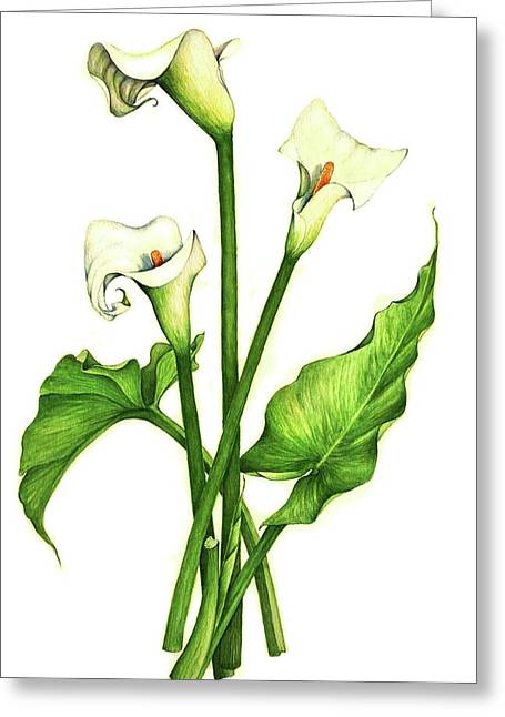 Greeting Card featuring the painting Calla Lilly by Heidi Kriel