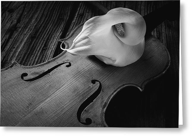 Calla Lily On Violin Black And White Greeting Card