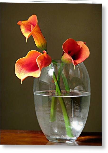 Calla Lily Stems Greeting Card by Diana Angstadt