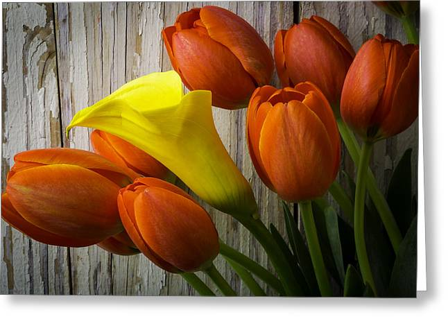 Calla Lily With Tulips Greeting Card
