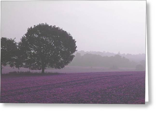 Calm Autumn Mist Greeting Card