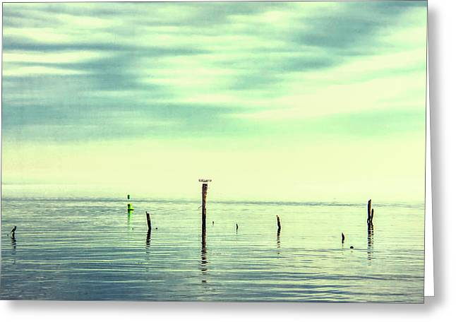 Greeting Card featuring the photograph Calm Bayshore Morning N0 1 by Gary Slawsky