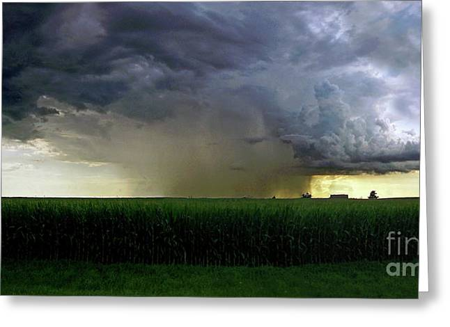 Calm Before The Storm Greeting Card by Sue Stefanowicz