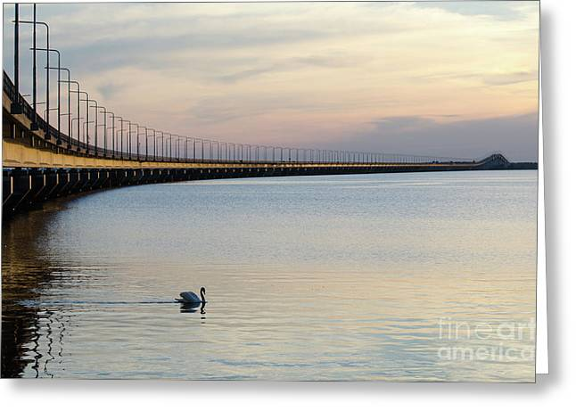 Calm Evening By The Bridge Greeting Card