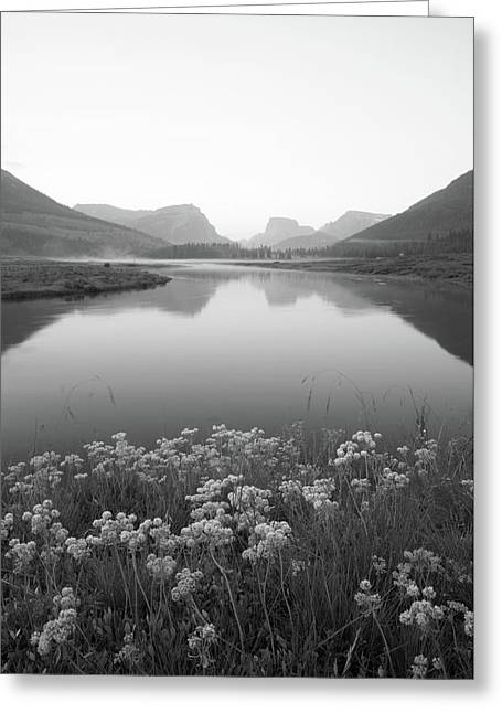 Greeting Card featuring the photograph Calm Morning  by Dustin LeFevre