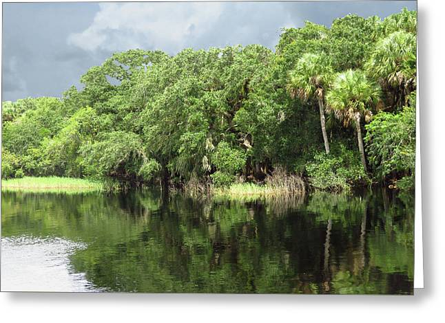 Calm River Reflections Greeting Card by Rosalie Scanlon