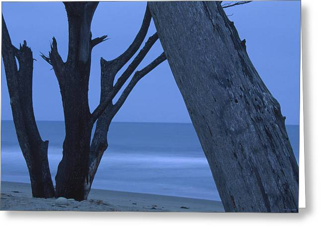 Calm Seas  Greeting Card by Soli Deo Gloria Wilderness And Wildlife Photography