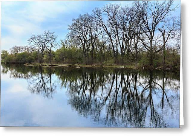 Calm Waters At Wayne Woods Greeting Card