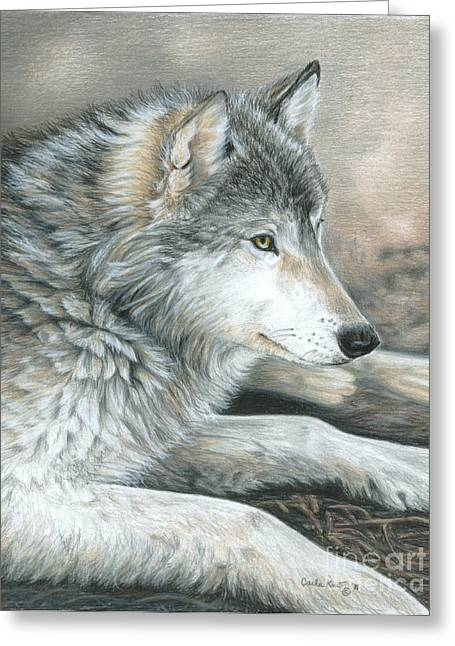 Calm Wolf Greeting Card