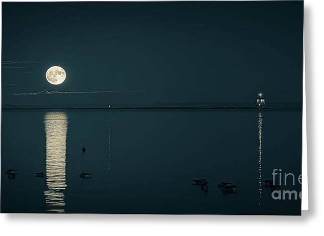 Calming Supermoon Greeting Card by James Brown