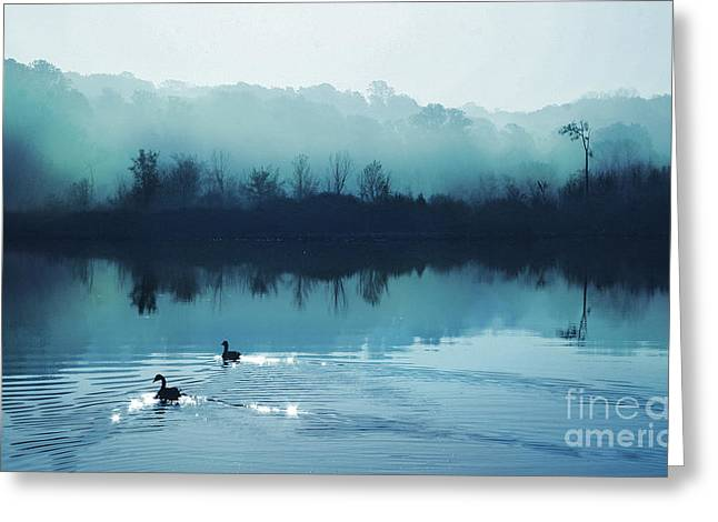 Calming Water Greeting Card by Gina Signore