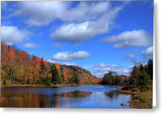 Calmness On Bald Mountain Pond Greeting Card by David Patterson