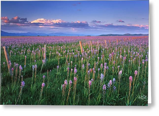 Camas Prairie Greeting Card by Leland D Howard