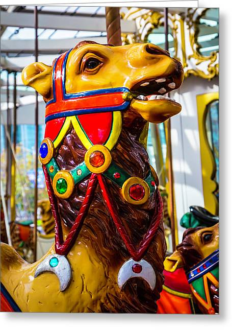 Camel Carrousel Ride Greeting Card by Garry Gay
