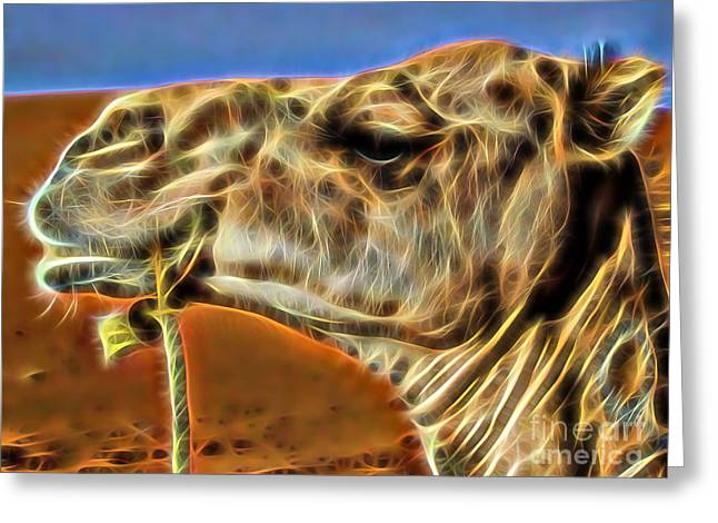 Camel Collection Greeting Card