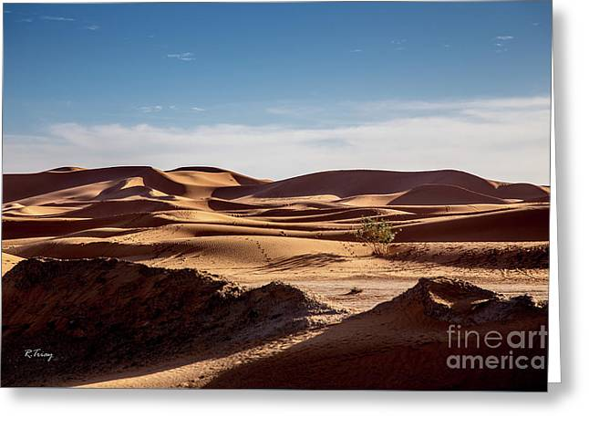 The Sahara's Desert Dunes Greeting Card