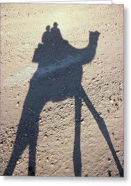 Camel Shadow Greeting Card