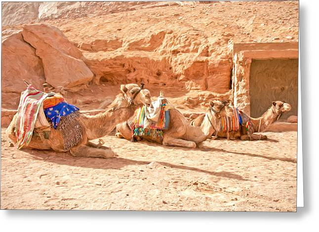 Camel Taxis  Greeting Card