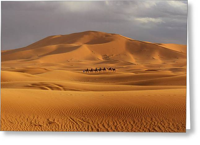Greeting Card featuring the photograph Camel Trek by Ramona Johnston
