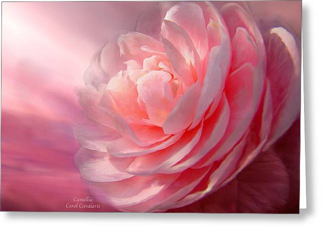Camellia Greeting Card by Carol Cavalaris