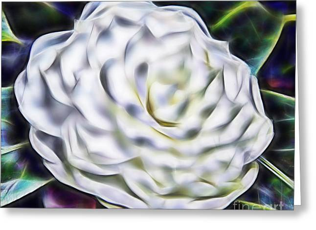 Geometrical Art Greeting Cards - Camellia In Fractal Greeting Card by D Hackett