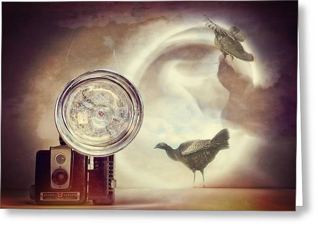 Camera Bird Collage Greeting Card by Susan Stone