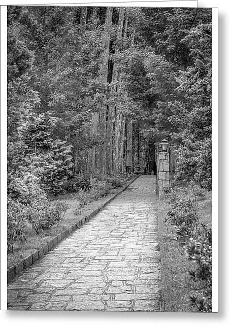 Caminho-mosteiro Das Monjas Beneditinas-campos Do Jordao-sp Greeting Card