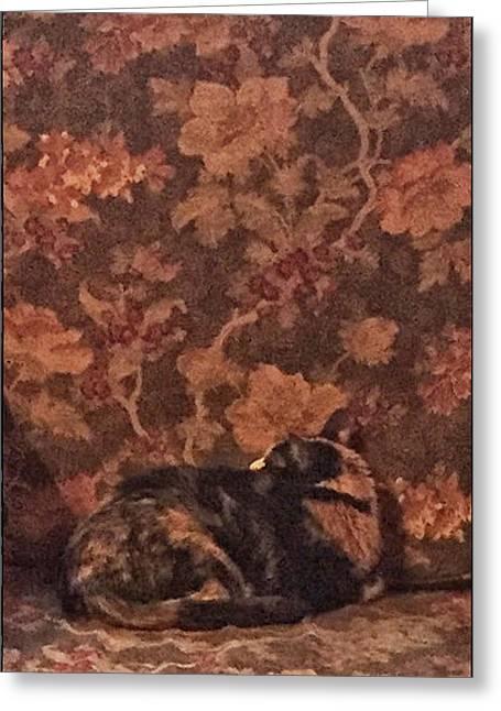 Camo Cat Greeting Card