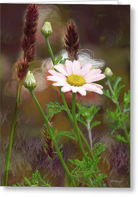 Camomile And Grass Greeting Card by Joe Halinar