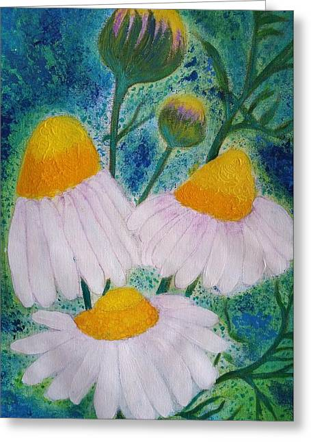 camomile flowers in my Puglia garden 2 Greeting Card by Jean Fassina
