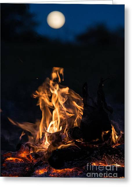 Camp Fire And Full Moon Greeting Card by Cheryl Baxter