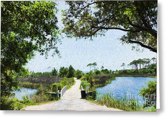 Camp Helen State Park Walkway To The Gulf Of Mexico Greeting Card by Vizual Studio