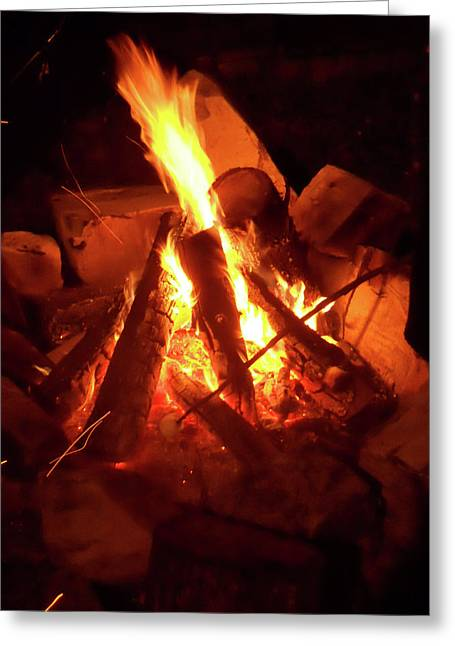 Campfire Greeting Card by Turtle Caps