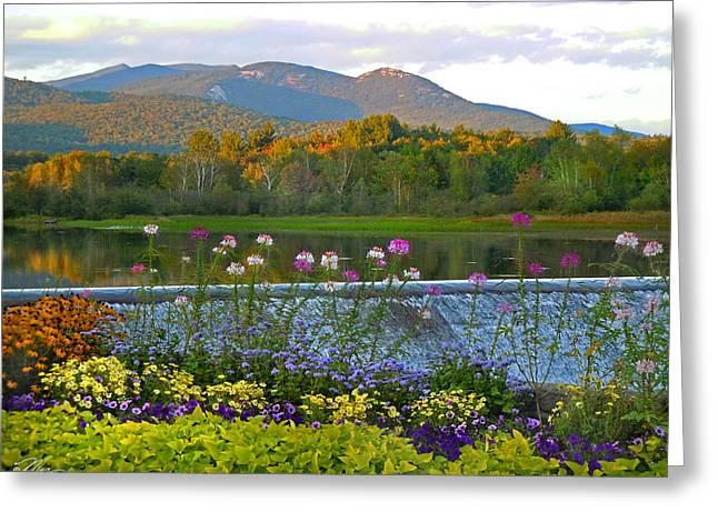 Campton Pond Campton New Hampshire Greeting Card