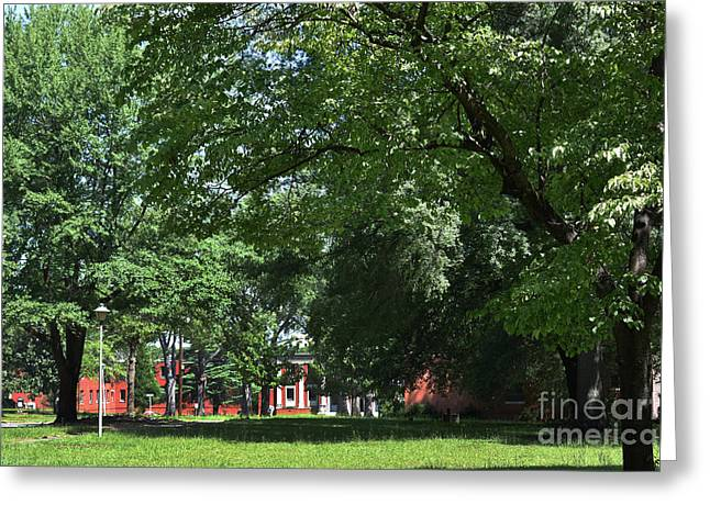 Campus Of The Infirmed Greeting Card