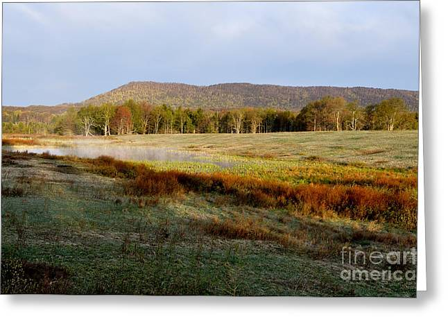 Mountain Valley Greeting Cards - Canaan Valley State Park Greeting Card by Thomas R Fletcher