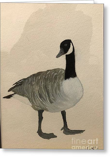 Greeting Card featuring the painting Canada Goose by Donald Paczynski