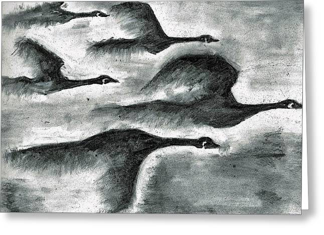 Canadian Geese Greeting Card by Begelfor Janet