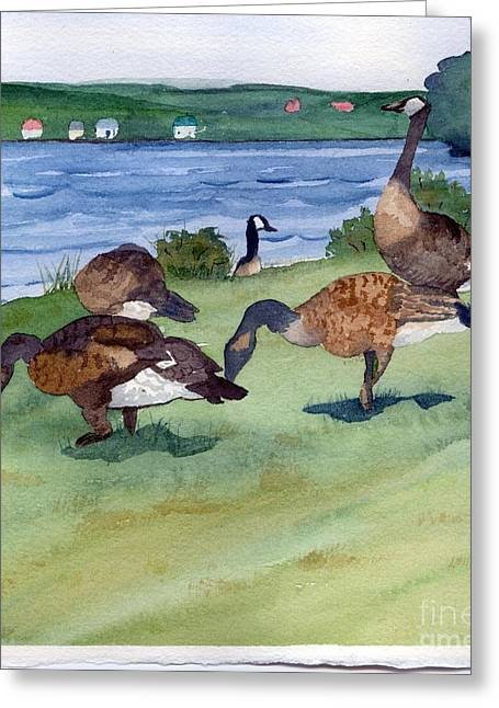 Canadian Geese S  2 Greeting Card by Gloria Couture