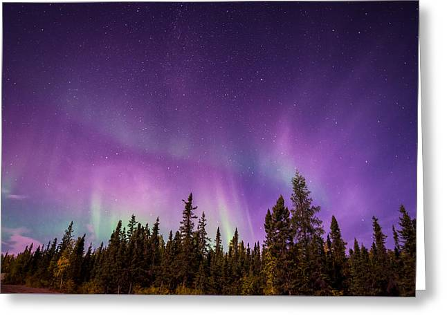 Canadian Northern Lights Greeting Card
