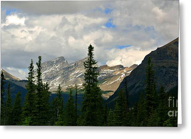 Canadian Rockies, Alta. Greeting Card by Elfriede Fulda