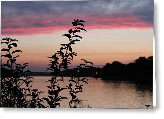 Canal Sunset Greeting Card by Shirley Doud