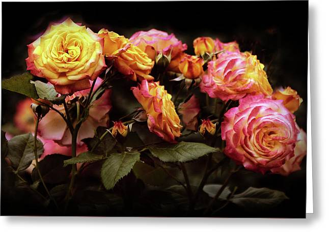 Candlelight Rose  Greeting Card by Jessica Jenney