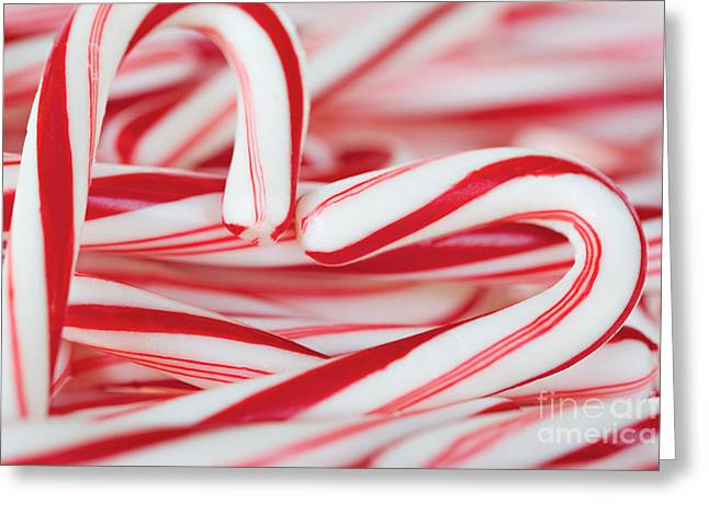 Candy Cane Love Greeting Card by Kim Fearheiley