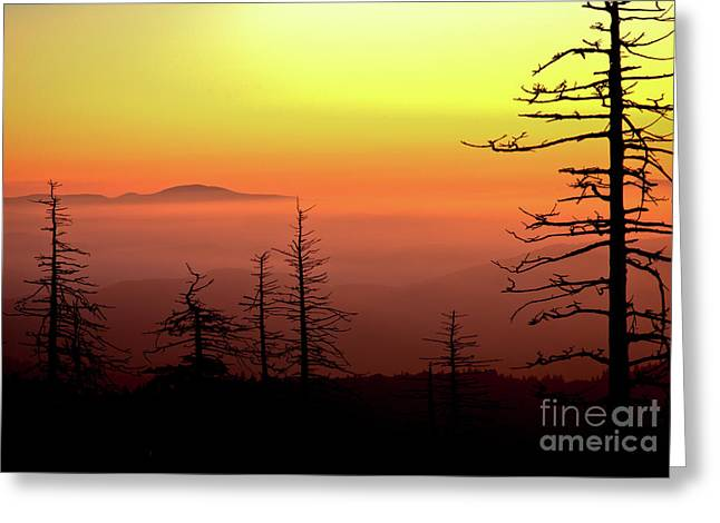 Greeting Card featuring the photograph Candy Corn Sunrise by Douglas Stucky
