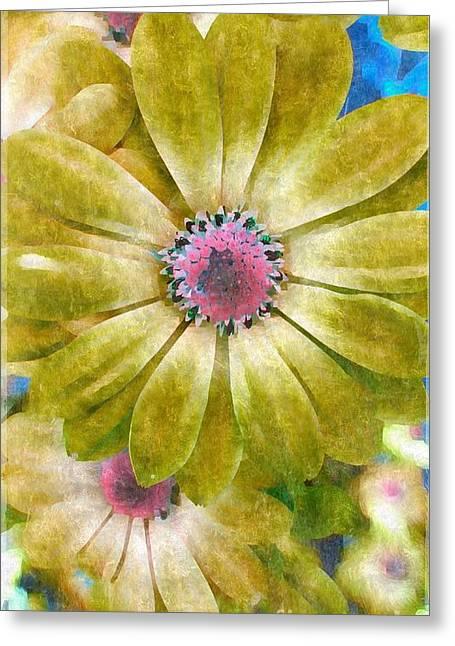 Candy Garden Greeting Card