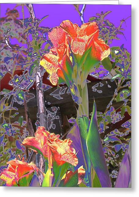 Canna Abstract 6 Greeting Card