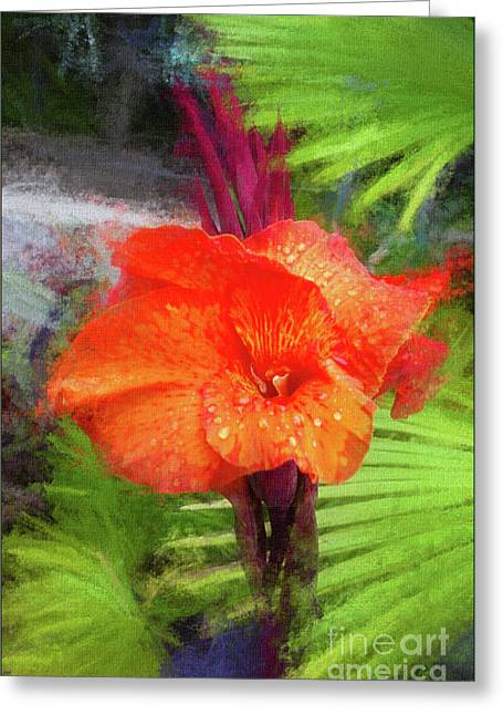Canna Lily Red Bloom Greeting Card