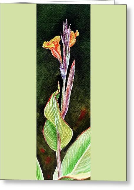 Canna Greeting Card by Irina Sztukowski